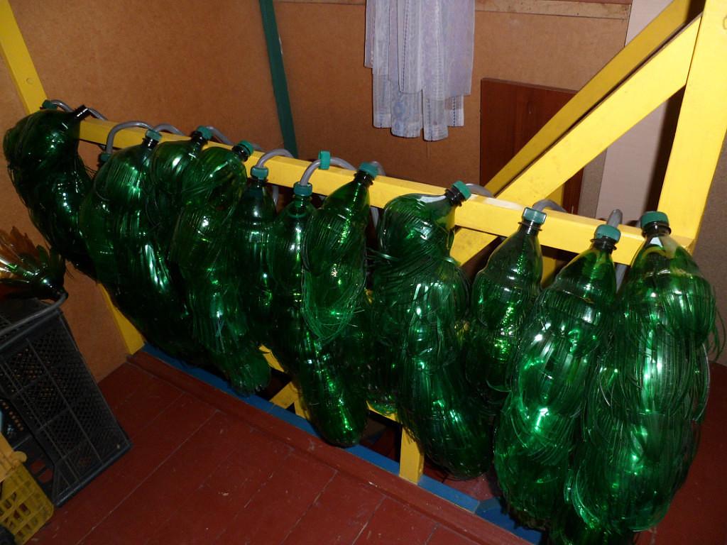 Пальмы из пластиковых бутылок фото поэтапно